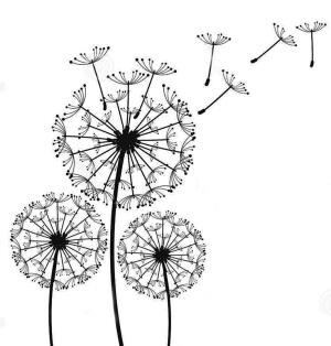 枯树叶简笔画步骤图