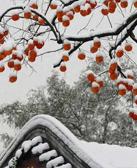 4月4日,北京大雪