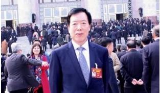 全国政协委员陈崎嵘