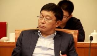 阿来代表参加审议政府工作报告分组会