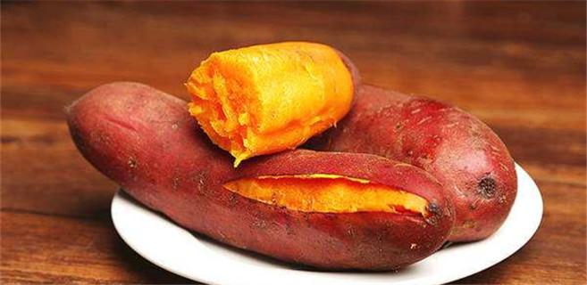 一只红薯的前世今生