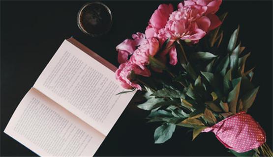 隐藏与诗意——读蔡东小说随想